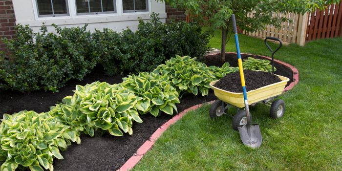 Mulch Installation and Cleanups